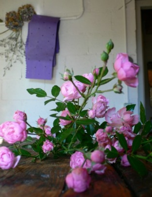 rosa The Fairy recisa