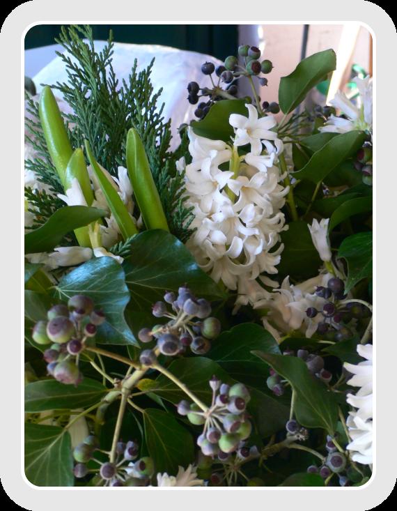 giacinto bianco