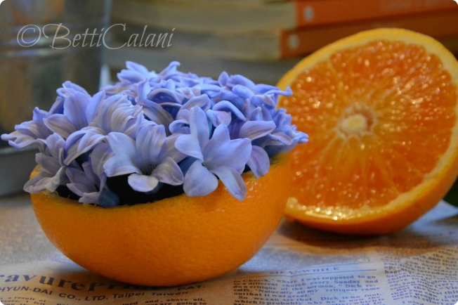 fiori di giacinto e arance