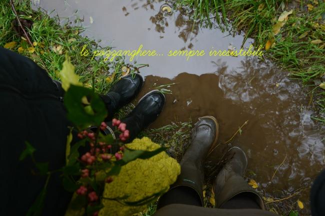 passeggiata nel bosco._0688