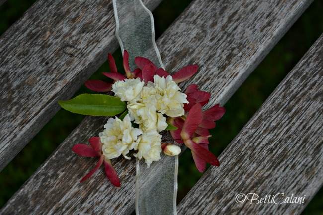 2014_Banksia_15_1