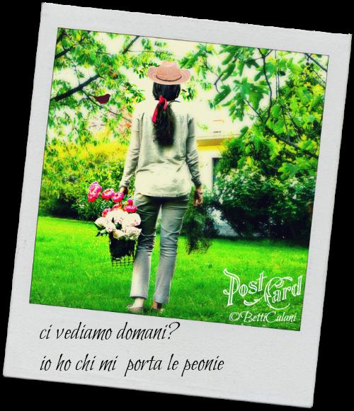 peonie_taste_benedetta_