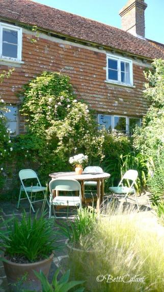 Dehors, sul muro della casa rose rampicanti: Rosa 'Madame Alfred Carriere' e nei vasi