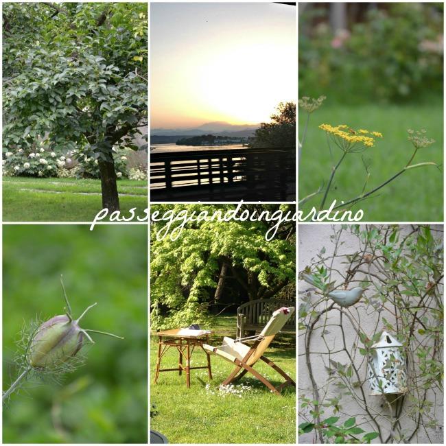 4_giardino di pombia