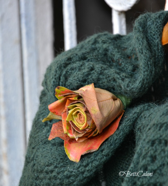 20141017_rose_di_foglie (1)_
