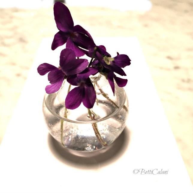 20150316_violette (22)_