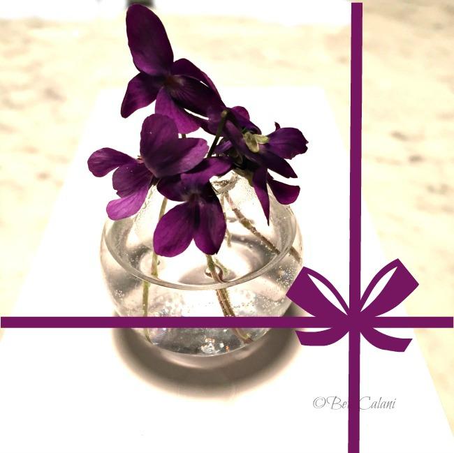 20150316_violette (22)_1
