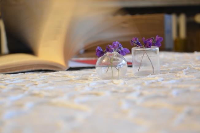 20150316_violette (5)