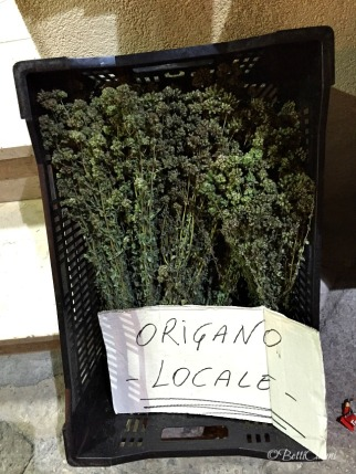 20150619_Puglia_Gallipoli_ (14)