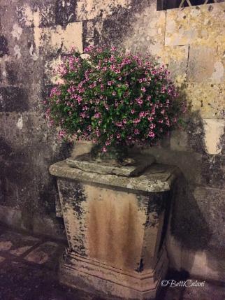 20150619_Puglia_Oristano_(8)