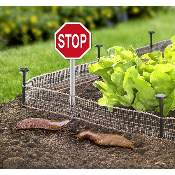 recinzione-ecologica-anti-lumache