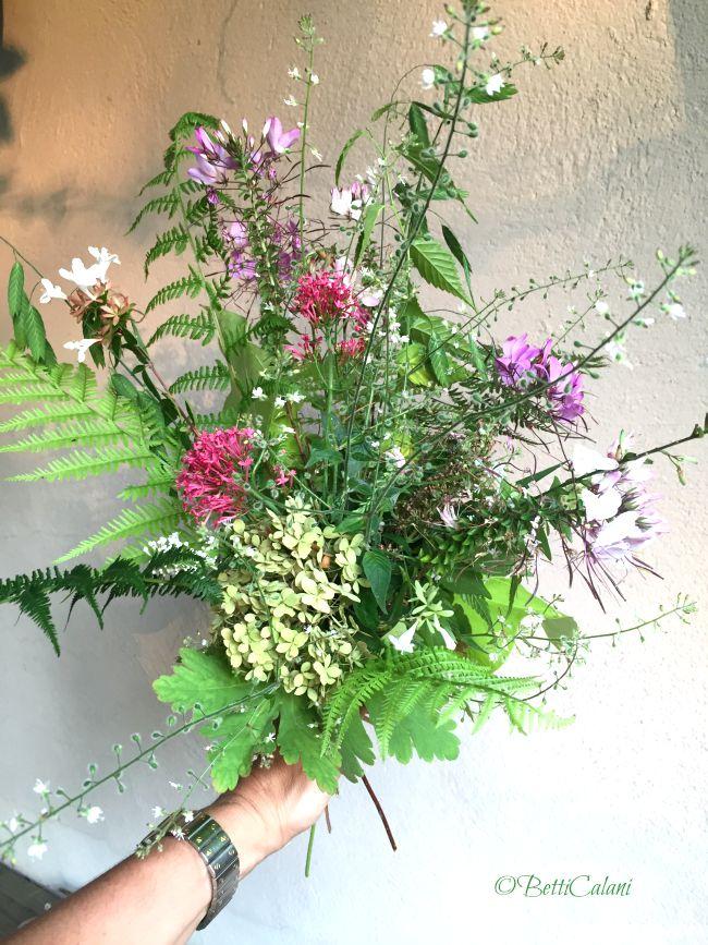 20150805_bouquet_estivo (2)