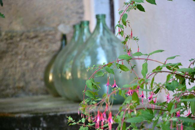 20150727_giardino_di_Pombia_fuchsia_ (19)