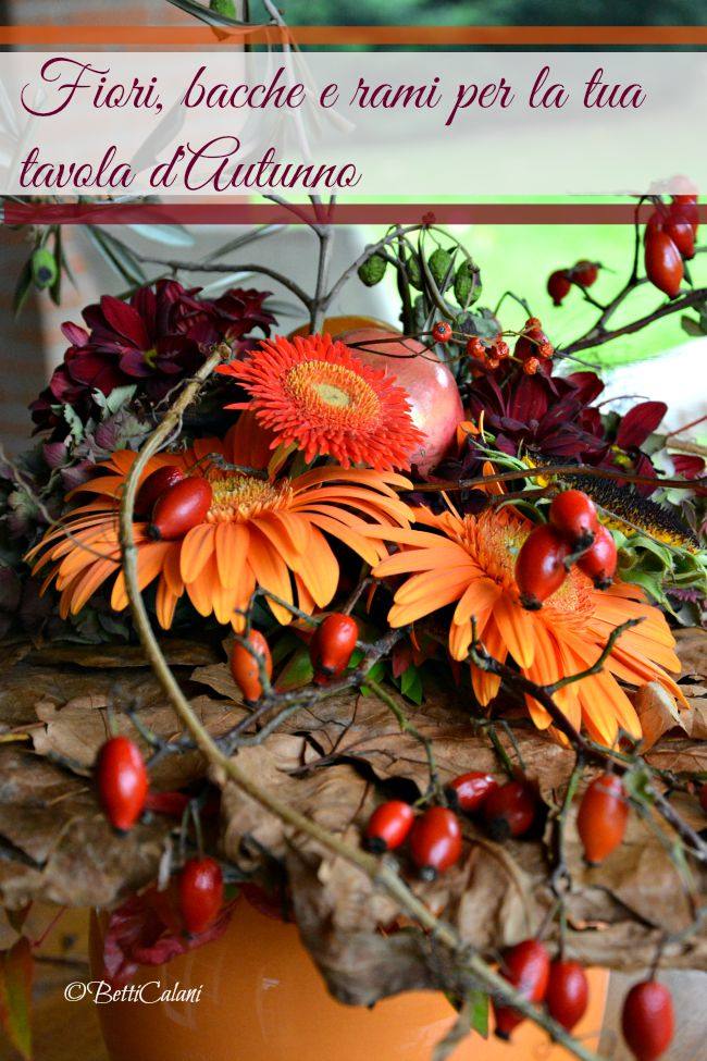 locandina_autunno_trifolia_arona 2015