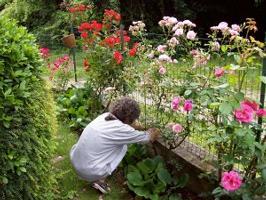 33178342_intervista-alla-scrittrice-adele-cavalli-autrice-di-scrittrici-in-giardino-0