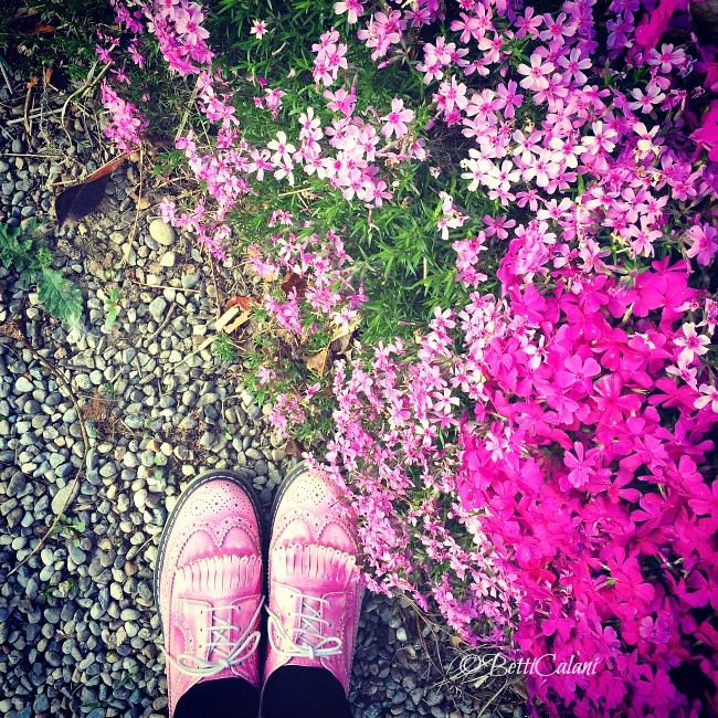 20150421_fioriture_di_aprile (3)_1
