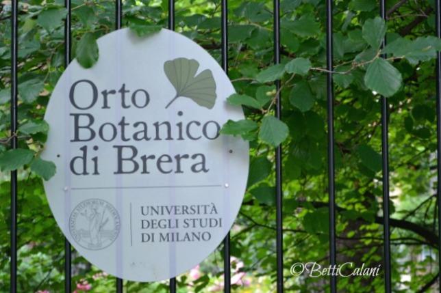 20160607_orto_botanico_brera_Wape (37)A