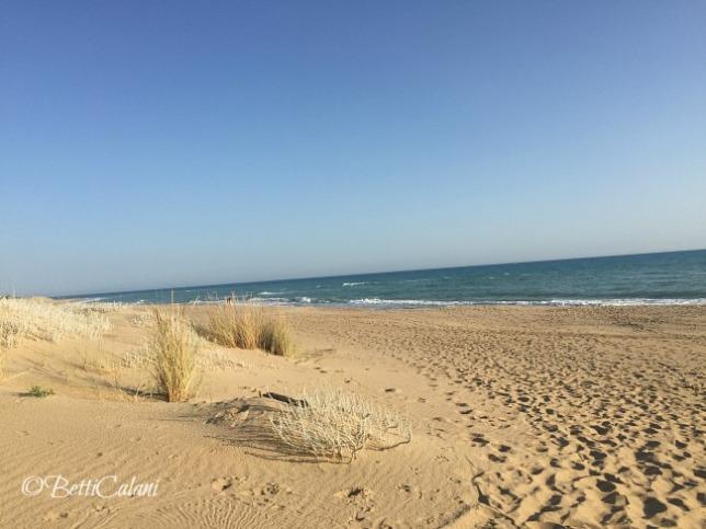 20160624_Sicilia_Iphone (16)