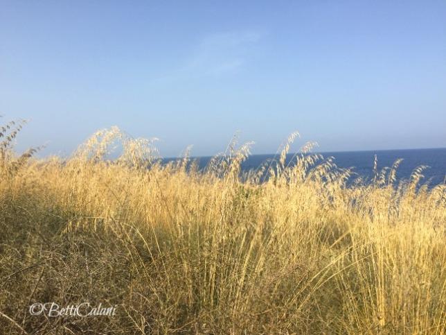20160624_Sicilia_Iphone (55)