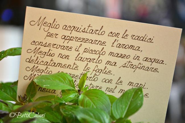 20160719_DesinoLento (12)_