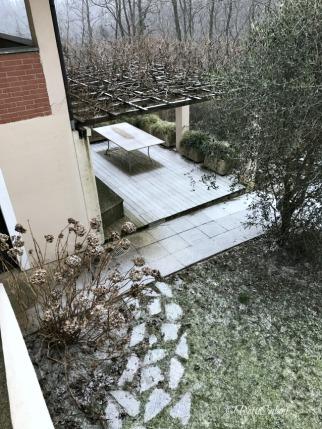 20170110_gennaio_in_giardino-1