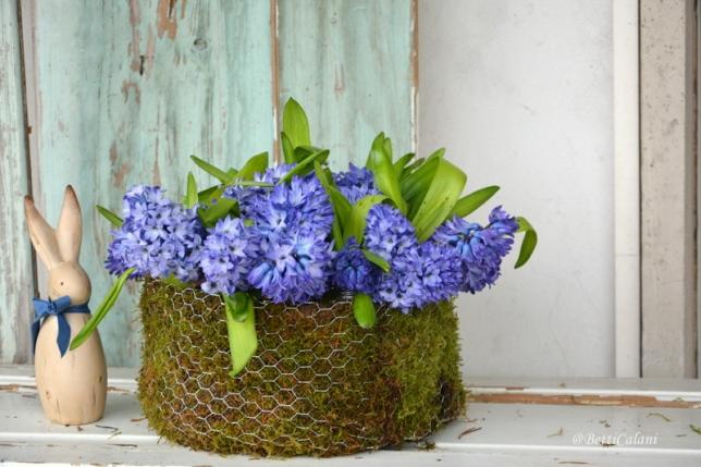 Passeggiandoingiardino i fiori del giardino per creare for Come costruire un mazzo sul retro portico