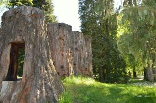 la grande sequoia