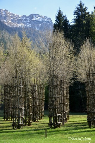 Cattedrale Vegetale/Tree Cathedral di Giuliano Mauri, 2001