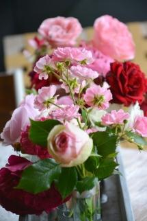 20190611_Conoscere_le_rose_e_le_peonie (3)